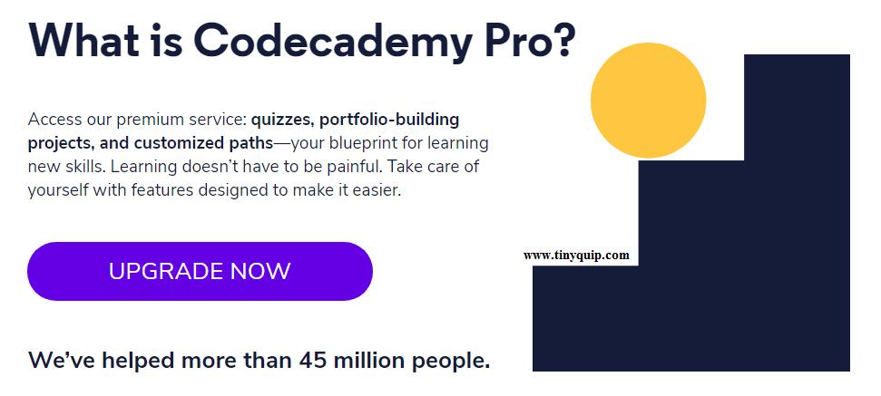 Learn programming online