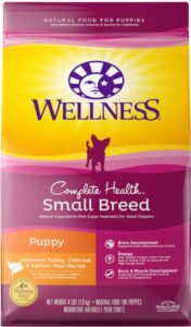 Nutritious Dry Food For Your Puppy