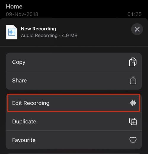 voice memo edit recording